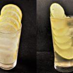 フルーツタワー(連結レモン、連結ライム、連結ゆず)レモンタワーならNORUCA.com