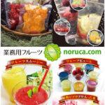 テイクアウト店舗向けドリンクメニュー、フルーツかき氷なら、NORUCA.com