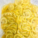 冷凍 塩レモンスライス (チリ産レモン)新発売